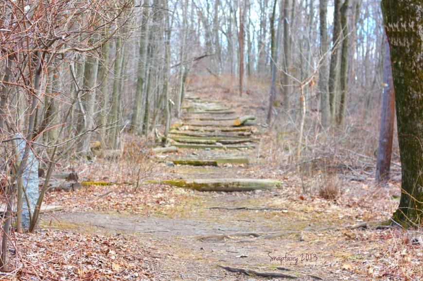 trail.blur.snp
